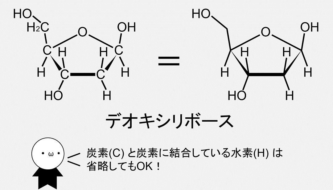 デオキシリボースの化学式です。